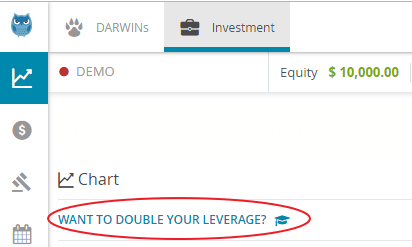 Double%20leverage%20SS