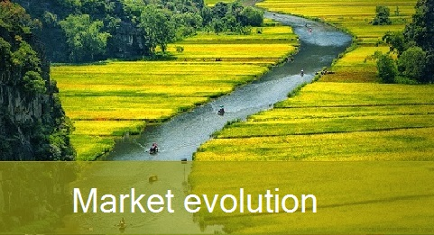 ___MarketEvolution3