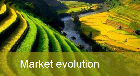___MarketEvolution1